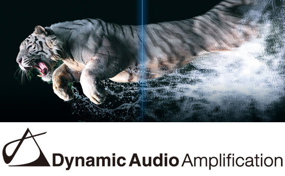 Dynamic Audio Amplification for Thrilling Sound Image