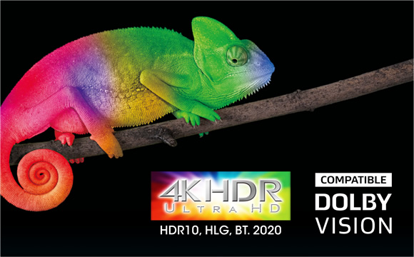 Supports HDR10, HLG, Dolby Vision™, BT.2020, 4K/60 Hz, and HDCP 2.2 Image