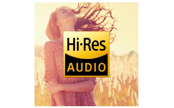 Hi-Res Audio via Network or USB Image